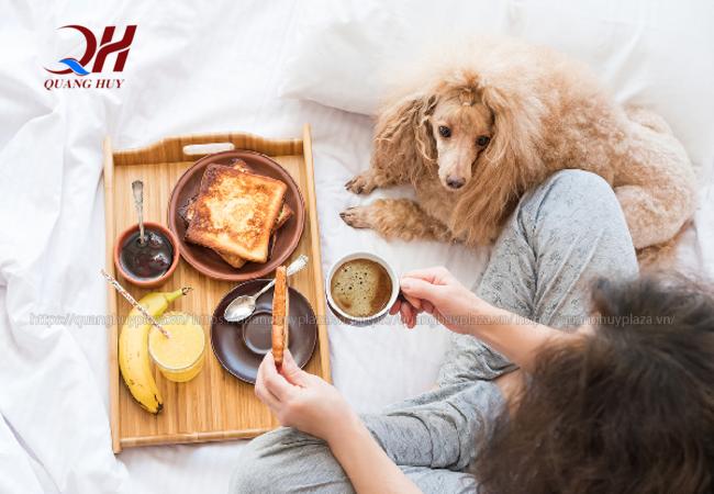 Việc ăn bánh mì mỗi sáng sẽ giúp tiêu hóa tốt hơn