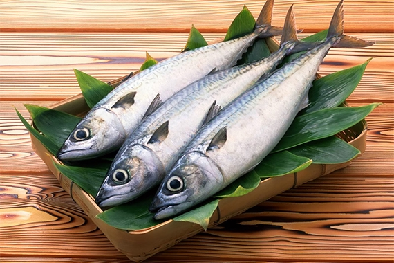 Chi phí mua nguyên liệu, đặc biệt là cá không quá đắt đỏ