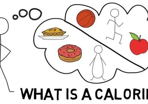 Bánh mì thịt bao nhiêu calo – bí quyết giảm cân hiệu quả!
